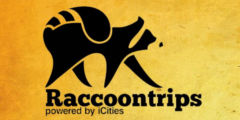 raccoon-trips